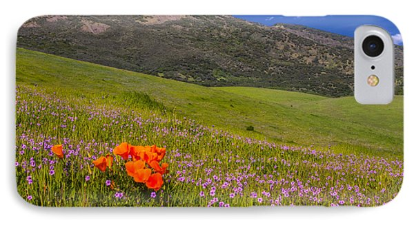 California Wildflowers IPhone Case by Marc Crumpler