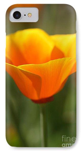 Californian Poppy Phone Case by Joy Watson