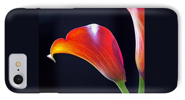 Calla Colors And Curves Phone Case by Rona Black