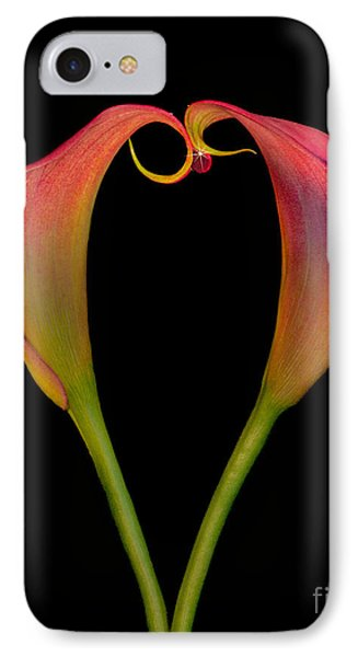 Calla Lillies Kissing IPhone Case by Susan Candelario