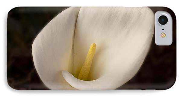 Calla Lilly 1 IPhone Case