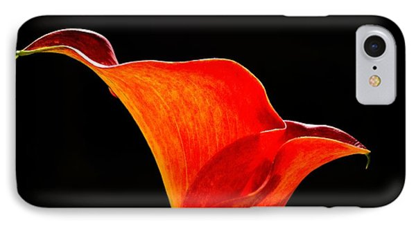 Calla Lily High Contrast IPhone Case