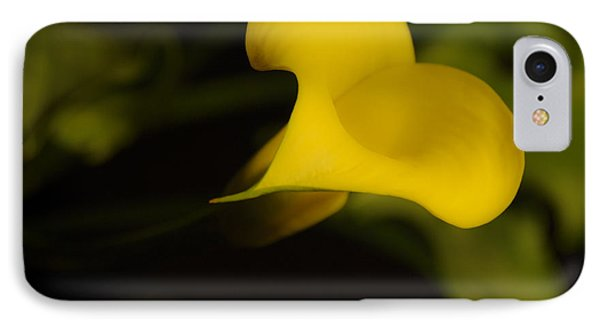 Calla Lily Yellow IIi Phone Case by Ron White