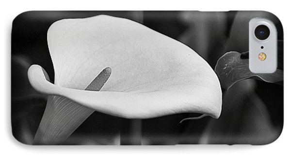 IPhone Case featuring the photograph Calla Lily002 by Nicola Fiscarelli