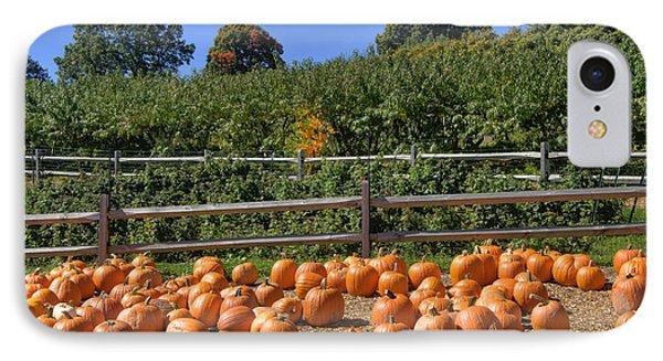 Calling Autumn IPhone Case by Joann Vitali
