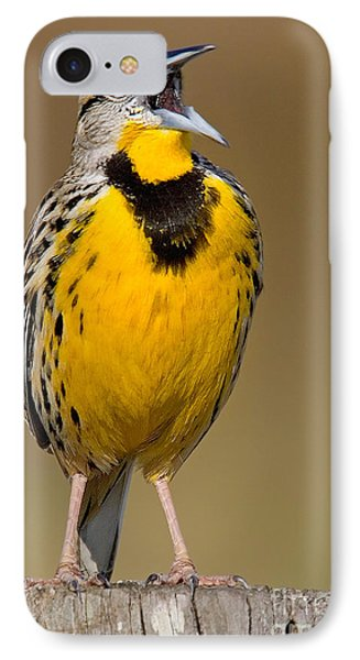 IPhone Case featuring the photograph Calling Eastern Meadowlark by Jerry Fornarotto