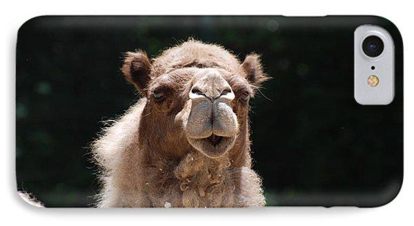 Camel IPhone Case by DejaVu Designs