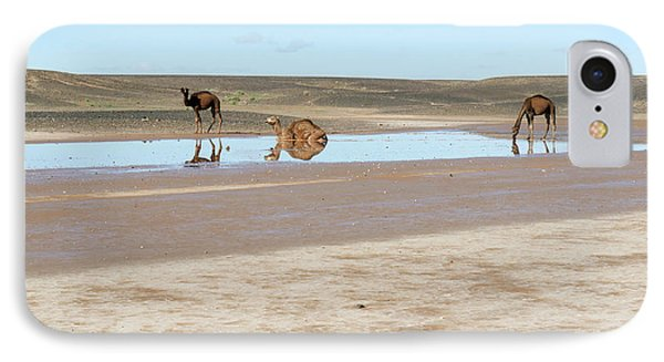 Camels And Drying Saharan Lake IPhone Case by Thierry Berrod, Mona Lisa Production