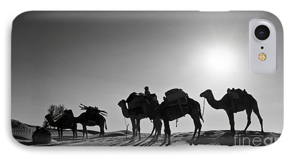 Desert Sunset iPhone 7 Case - Camels by Delphimages Photo Creations
