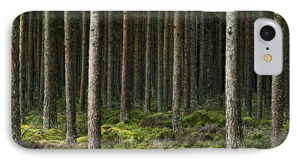 IPhone Case featuring the photograph Camore Wood Scotland by Sally Ross