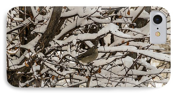 IPhone Case featuring the photograph Camouflaged Thrush by Sue Smith