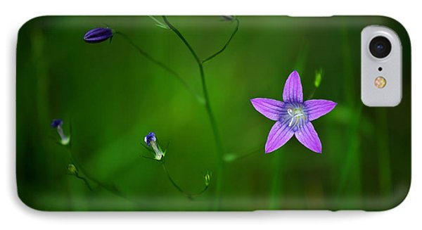 Campanula Patula IPhone Case