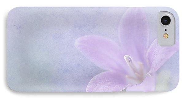 Campanula Portenschlagiana Phone Case by John Edwards