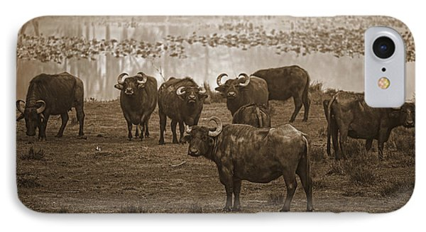 Can Not Roller Skate In A Buffalo Herd Phone Case by Frank Feliciano