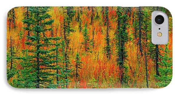 Canada, Alberta Autumn In A Meadow IPhone Case by Jaynes Gallery