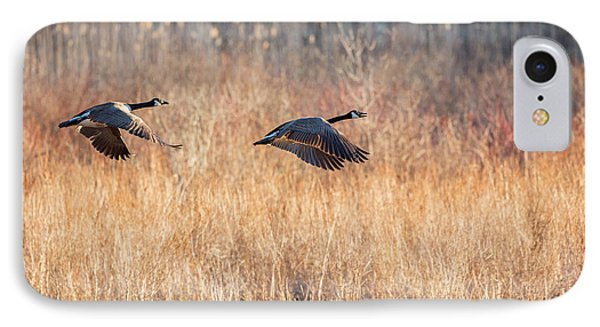 Canada Geese IPhone Case by Bill Wakeley