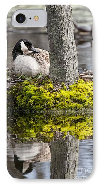 Canada Goose On Nest IPhone Case