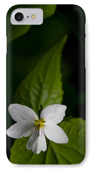 Canada Violet IPhone Case by Melinda Fawver