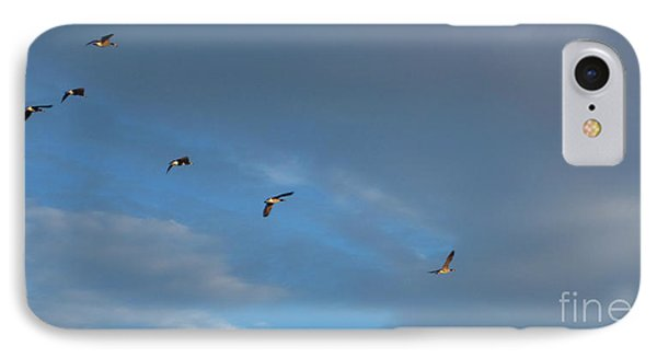 Canadian Geese 1 Of 3 Phone Case by Janet Otto