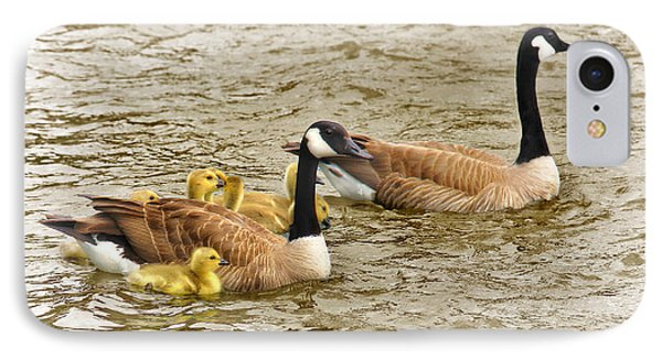 Canadian Geese And Goslings Bright Waters IPhone Case by Jennie Marie Schell