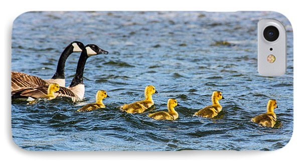 Canadian Geese And Goslings Phone Case by Omaste Witkowski