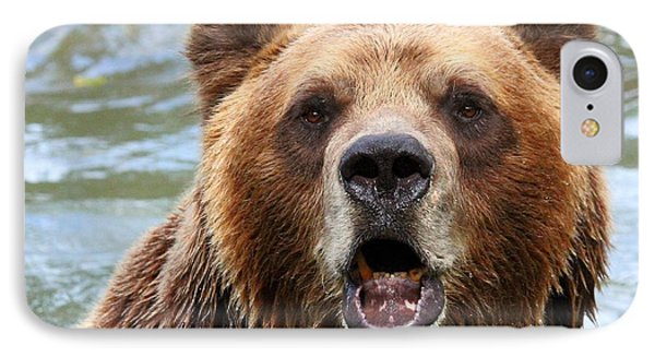 Canadian Grizzly IPhone Case by Davandra Cribbie