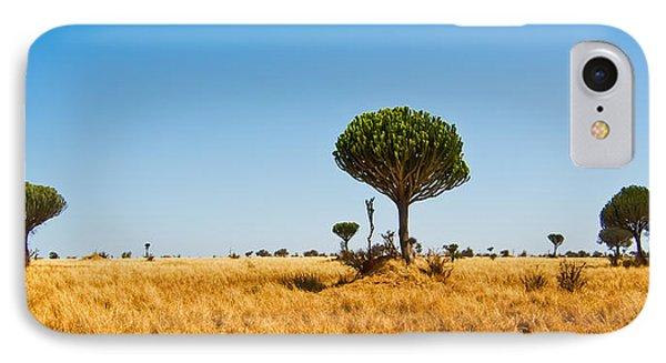 Candelabra Trees IPhone Case by Adam Romanowicz