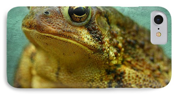 Cane Toad IPhone Case by Michael Eingle