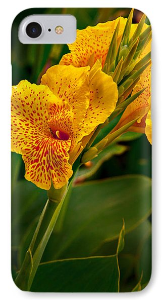 Canna Blossom IPhone Case by Mary Jo Allen