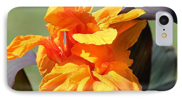 Canna Lily Named Wyoming Phone Case by J McCombie