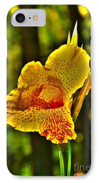 Canna Wow Phone Case by Kim Pate
