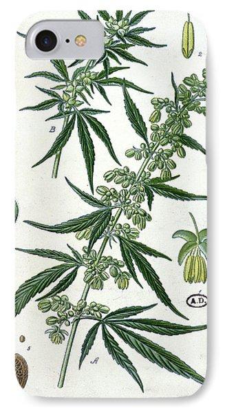 Cannabis IPhone Case