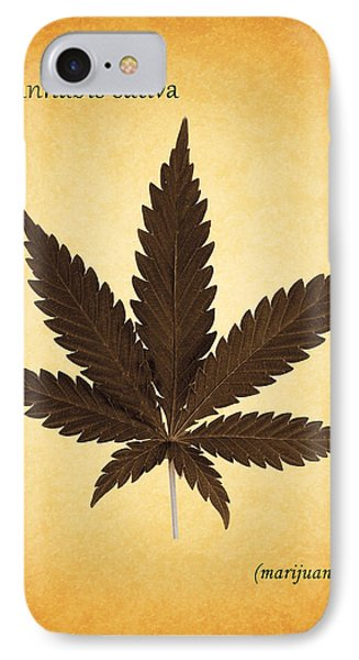 Cannabis Sativa IPhone Case by Mark Rogan