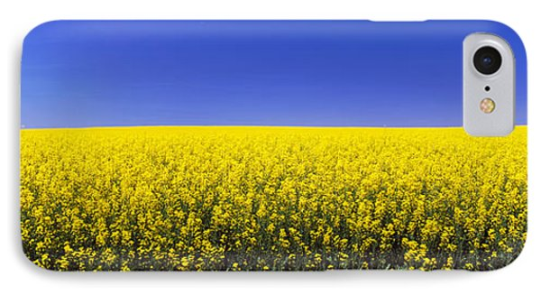 Canola Field In Bloom, Idaho, Usa IPhone Case by Panoramic Images