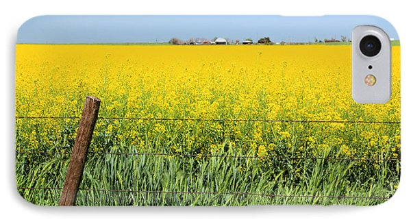 Canola Field IPhone Case by Pattie Calfy
