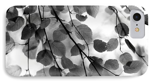 Canopy IPhone Case by Aaron Aldrich