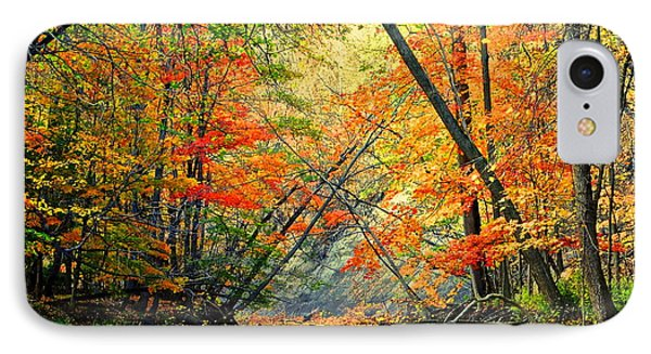 Canopy Of Color II Phone Case by Frozen in Time Fine Art Photography