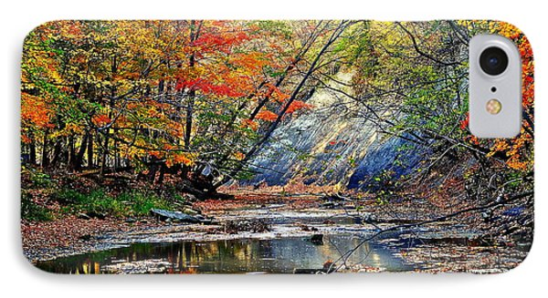 Canopy Of Color Iv Phone Case by Frozen in Time Fine Art Photography