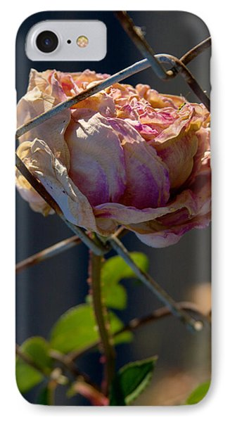 IPhone Case featuring the photograph Can't Fence Me In - Faded Rose Art Print by Jane Eleanor Nicholas