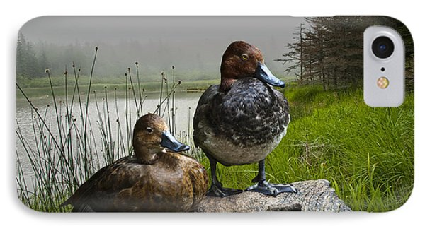 Canvasback Duck Pair By A Pond IPhone Case by Randall Nyhof