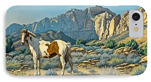 Canyon Country Paints Phone Case by Paul Krapf