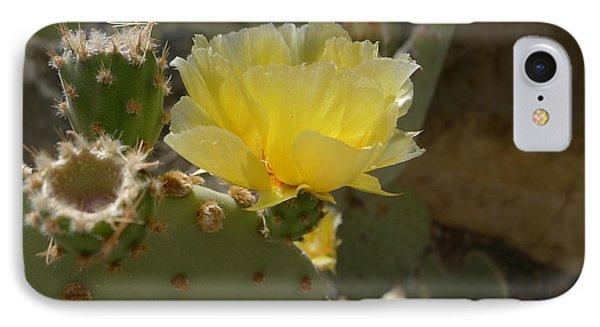 Canyon Flower IPhone Case by Joel Deutsch