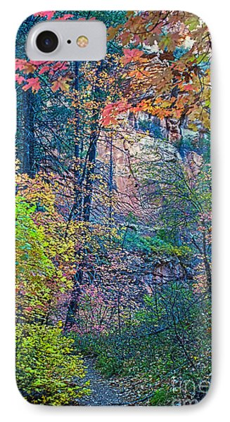 Canyon Trail IPhone Case