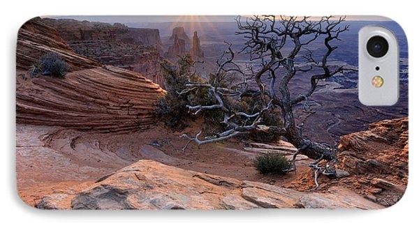 Canyonlands Sunrise Landscape With Dry Tree Phone Case by Yevgen Timashov