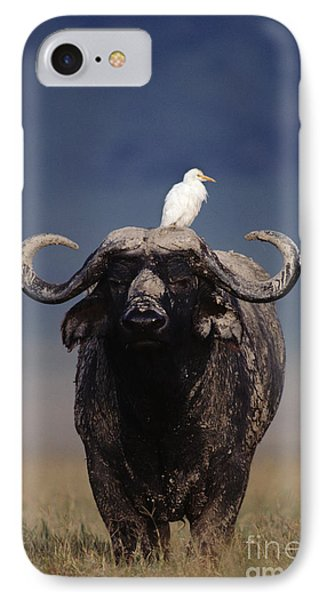 Cape Buffalo With Cattle Egret In Tanzania IPhone Case by Frans Lanting MINT Images
