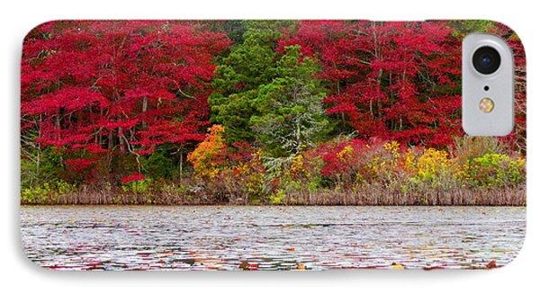 Cape Cod Autumn IPhone Case by Dianne Cowen