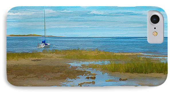 Cape Cod Bay IPhone Case by Michael Petrizzo