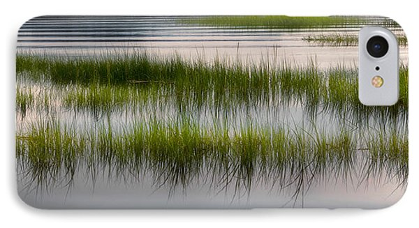 Cape Cod Marsh IPhone Case