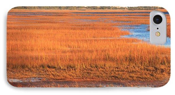 Cape Cod Salt Marsh Autumn Evening IPhone Case by John Burk