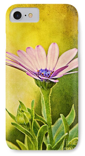 Cape Daisy Phone Case by Lois Bryan